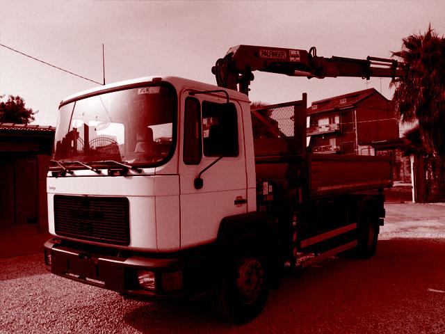 Camion Ribaltabili con Gru usati in vendita