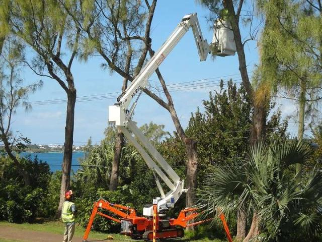Easy Lift R210 Foto 1