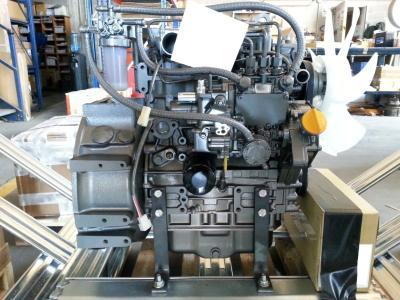Yanmar 3TNV76 in vendita da 2M Srl
