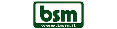 Logo  BSM S.R.L.