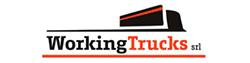 Venditore: Working Trucks Srl